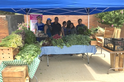 Mott Haven Farm Stand crew in front of a mountain of fresh local produce
