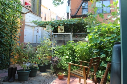 Morgen and Ejaz's backyard